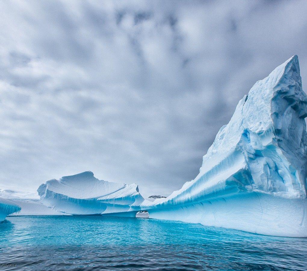 Kalle Ljung antarctica | CURIOSITE