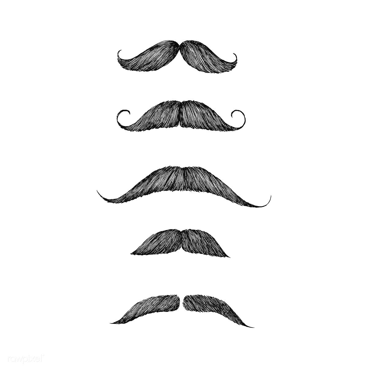Download Premium Vector Of Hand Drawn Moustache Isolated On White How To Draw Hands Moustache Draw