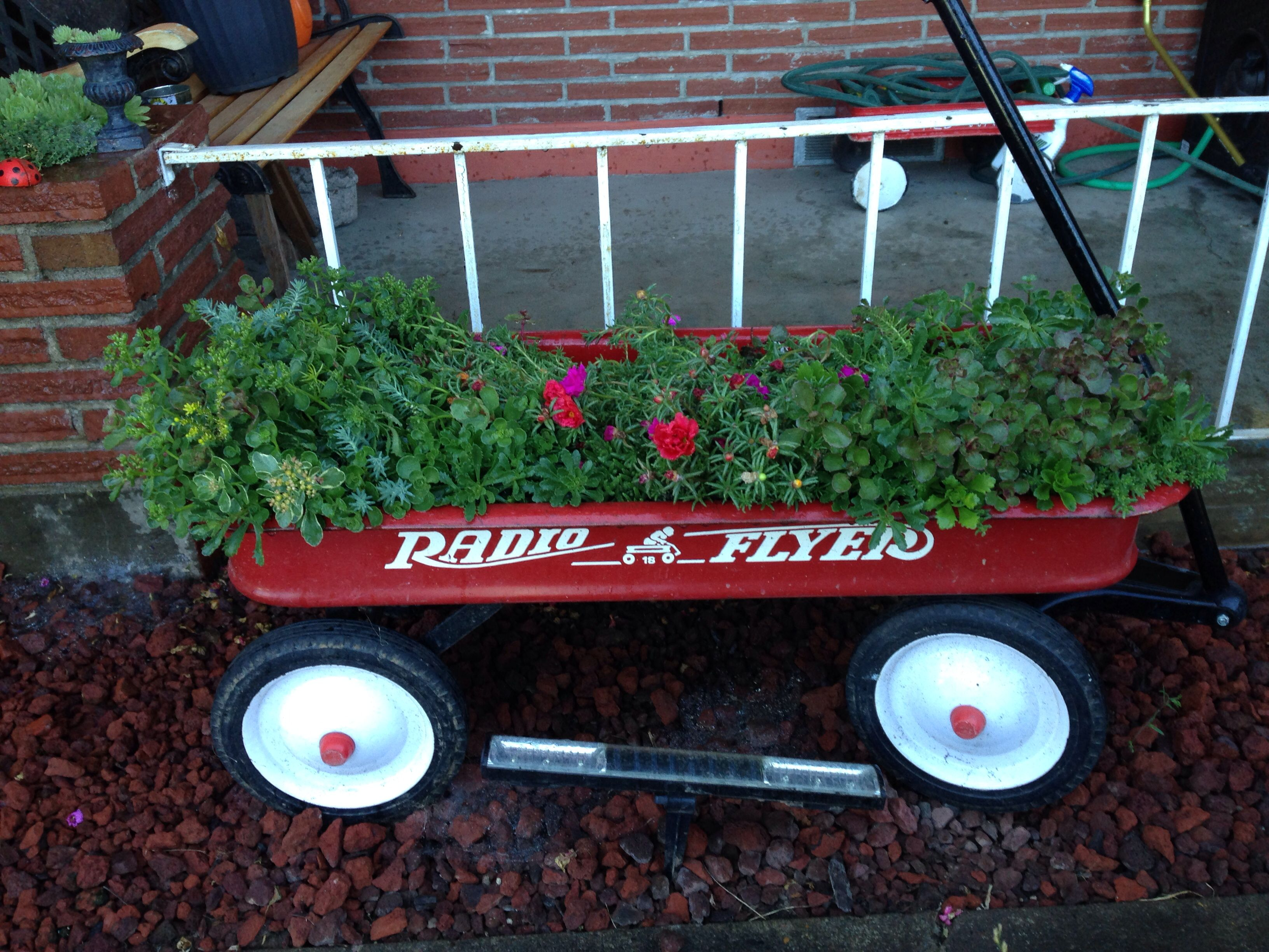 One of the vintage Radio Flyer Wagon planter/container gardens I've made :)   Make sure to drill holes for drainage & coat the inside of it with polyurethane to keep your plants healthy.