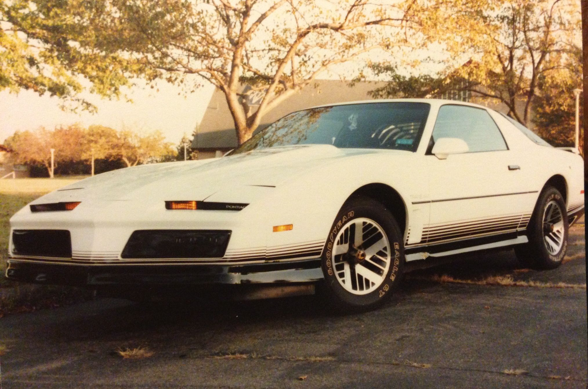 One of my other most favorite cars I've owned! 1984 Pontiac Firebird Trans Am. I looked soooo cool driving around in this bad boy wearing my black leather driving gloves, collar flipped up, cheesy Tom Selleck mustache! How did the ladies resist me?!?! LOL!