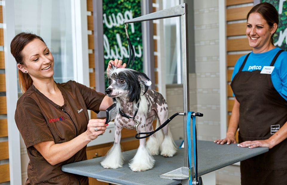 Petco Services (With images) Petco, Grooming, Pet grooming
