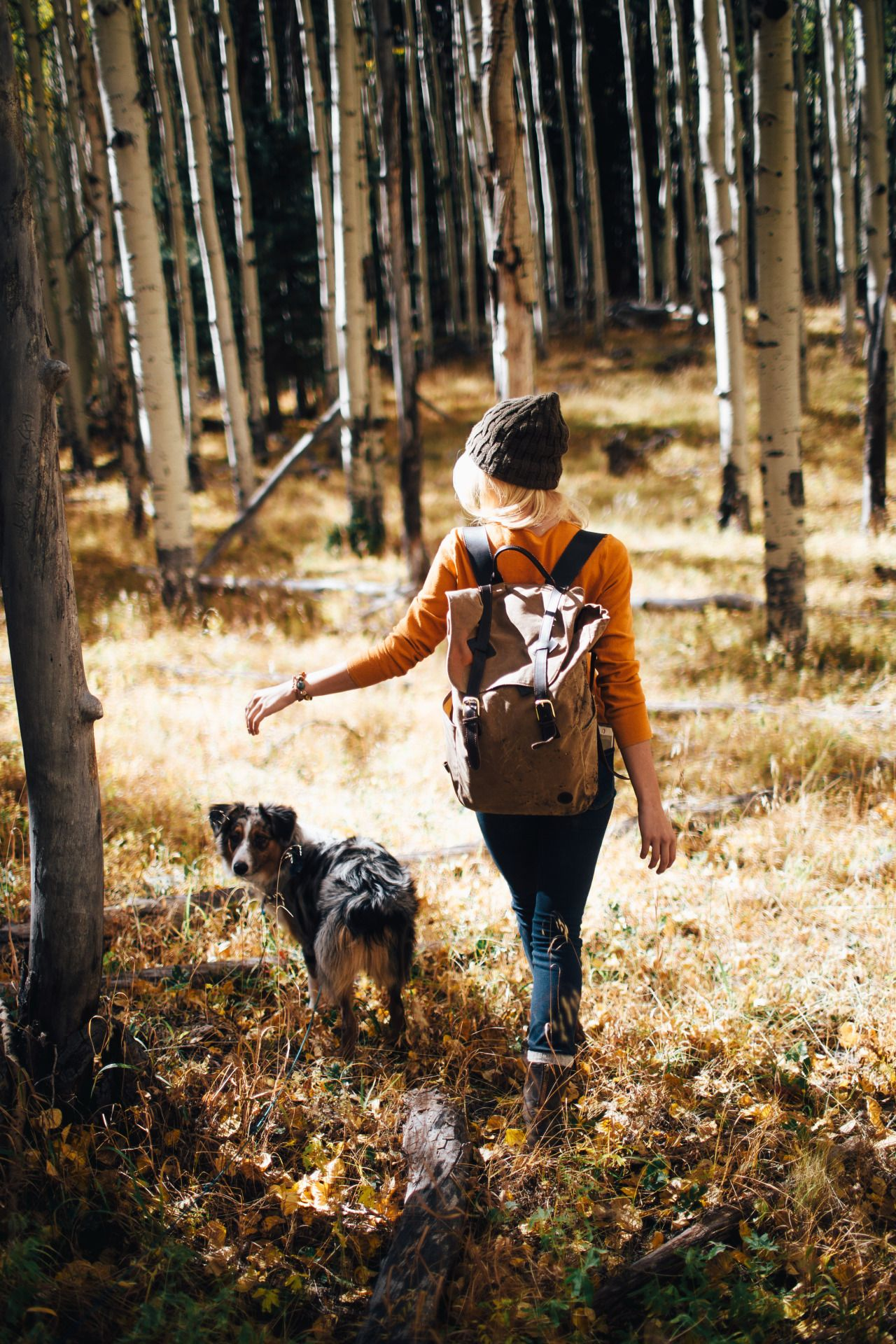 Walking my dog is not only relaxing as we go to nice wooded areas, but also provides me with the chance to so exercise and explore new areas.