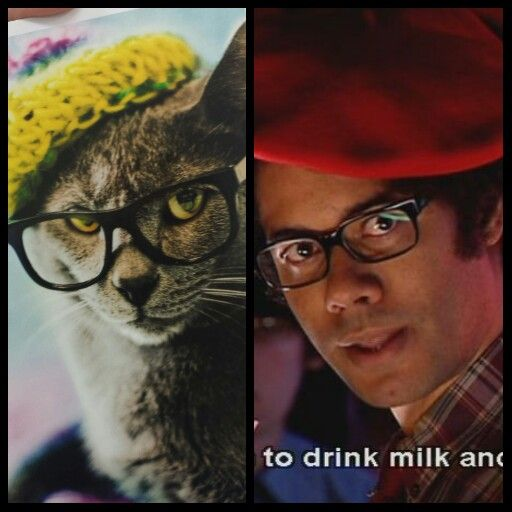 Am I the only one who sees the resemblance?  This Hipster Cat looks just like The IT Crowd's Moss.