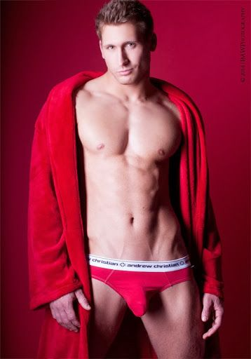 Gay red power ranger