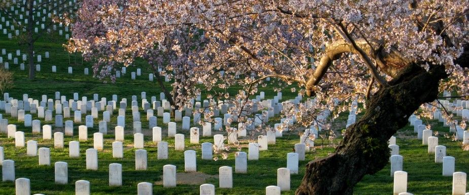memorial day cover photos and screen savers memorial day card