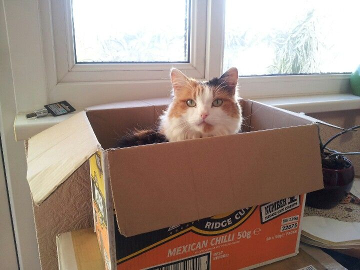 This box is now mine...