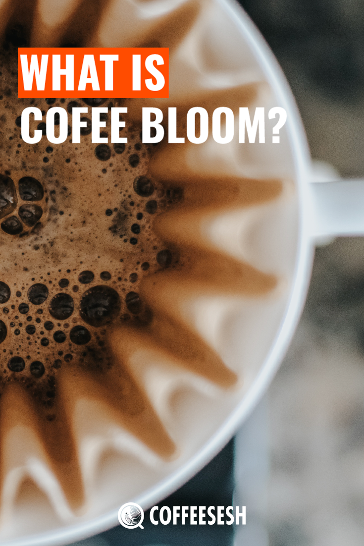 What Is Coffee Bloom Via Coffeesesh Coffee Tasting Bloom Coffee Sour Taste