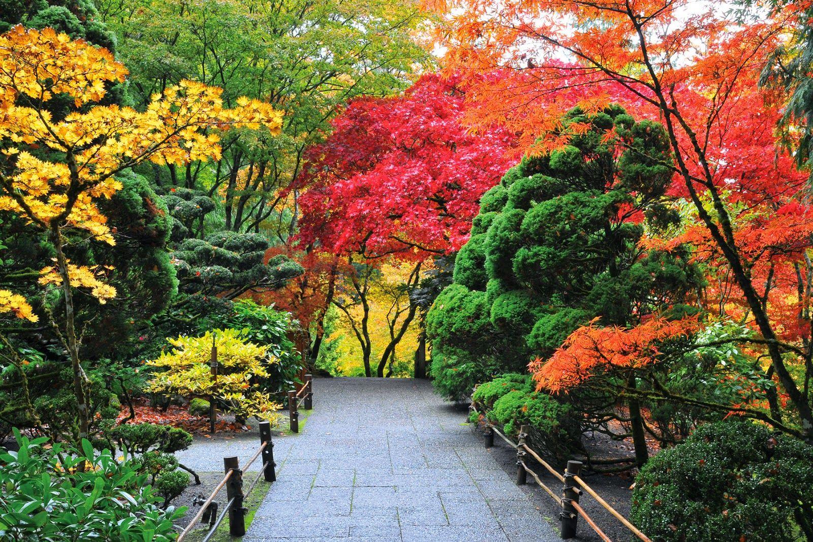 Paisajes hermosos del mundo entero google search - Paisajes y jardines ...