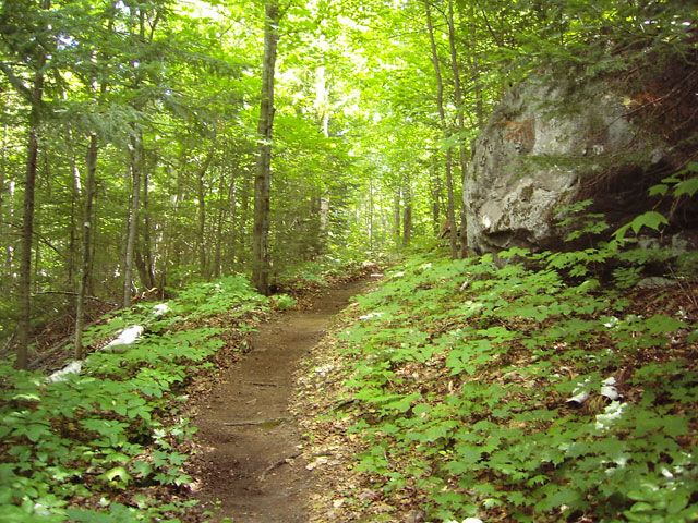 This summer, go hiking in the Laurentians.