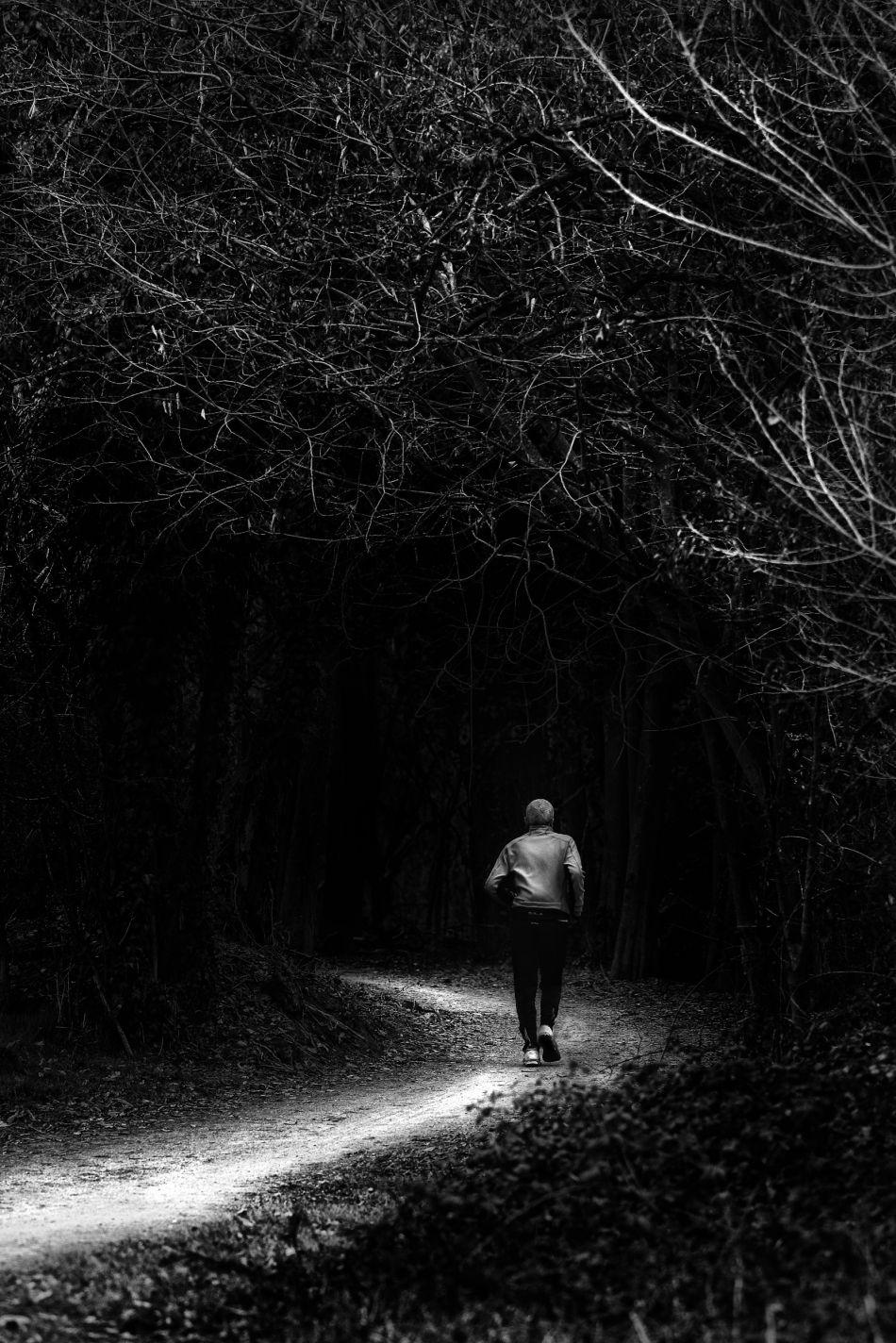 La selva oscura | Photoblog | Life Beyond Tourism