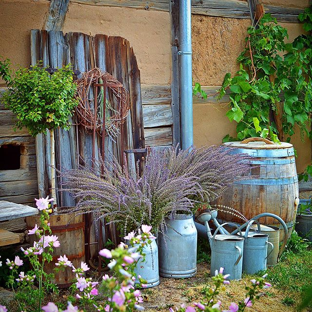 Christin By Hof 9 Na Instagramie Hey Da Ich War Gerade Ein Wenig Im Garten Unterwegs Heute Ist Es Ja Recht Ert Garden Inspiration Garden Tours Instagram
