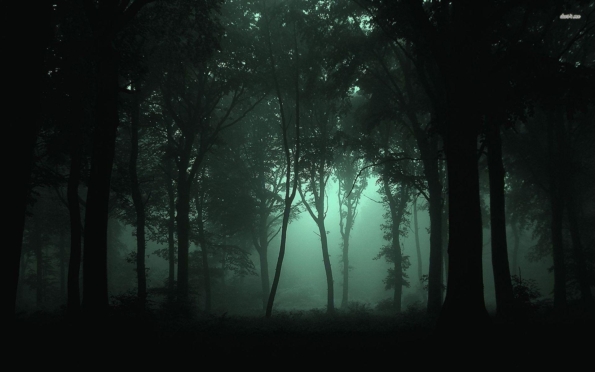 Simple Wallpaper Night Forest - 34326b35ed4a0d02bd92e8f49ec13e7f  Graphic-83811.jpg