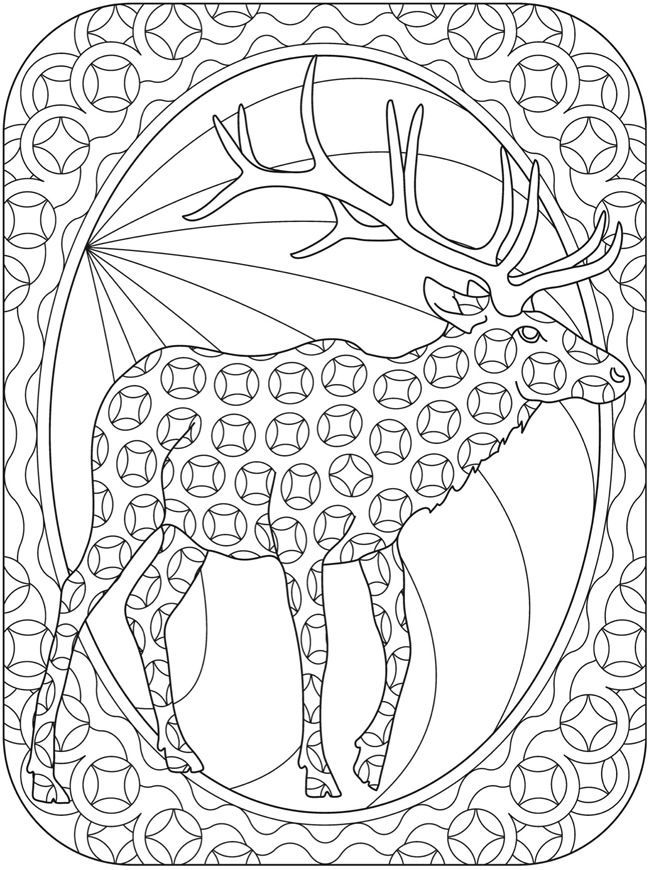Reindeer Coloring Pages For Adults Coloring Pages Animal Coloring Pages Christmas Coloring Pages