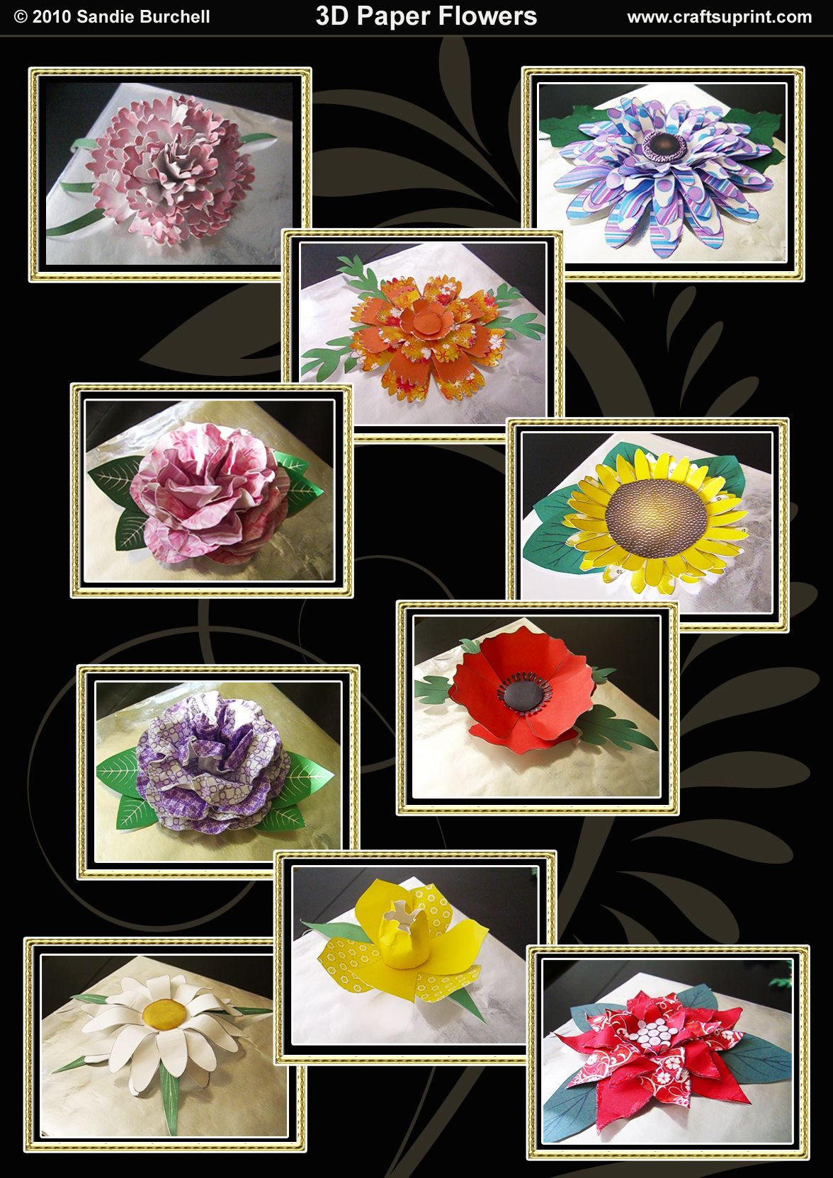 D Paper Flowers Tutorial Updateddpaperflowerspromophotos