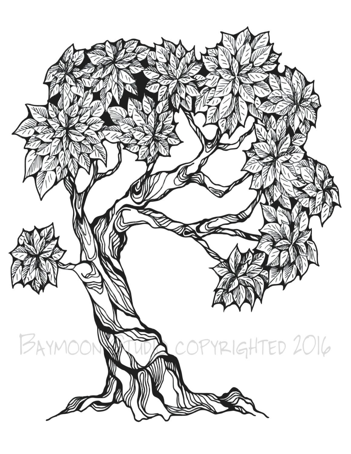 Bonsai Tree Coloring Page Printable Coloring By Baymoonstudio Tree Coloring Page Tree Drawing Picture Tree
