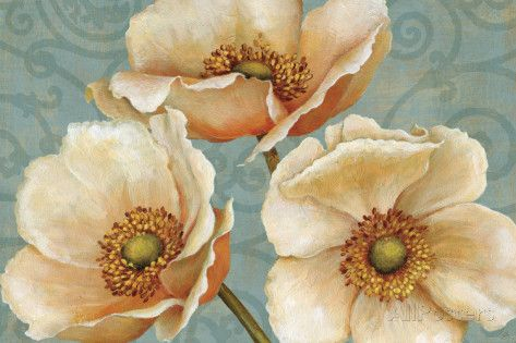 Windflower Prints by Daphne Brissonnet at AllPosters.com