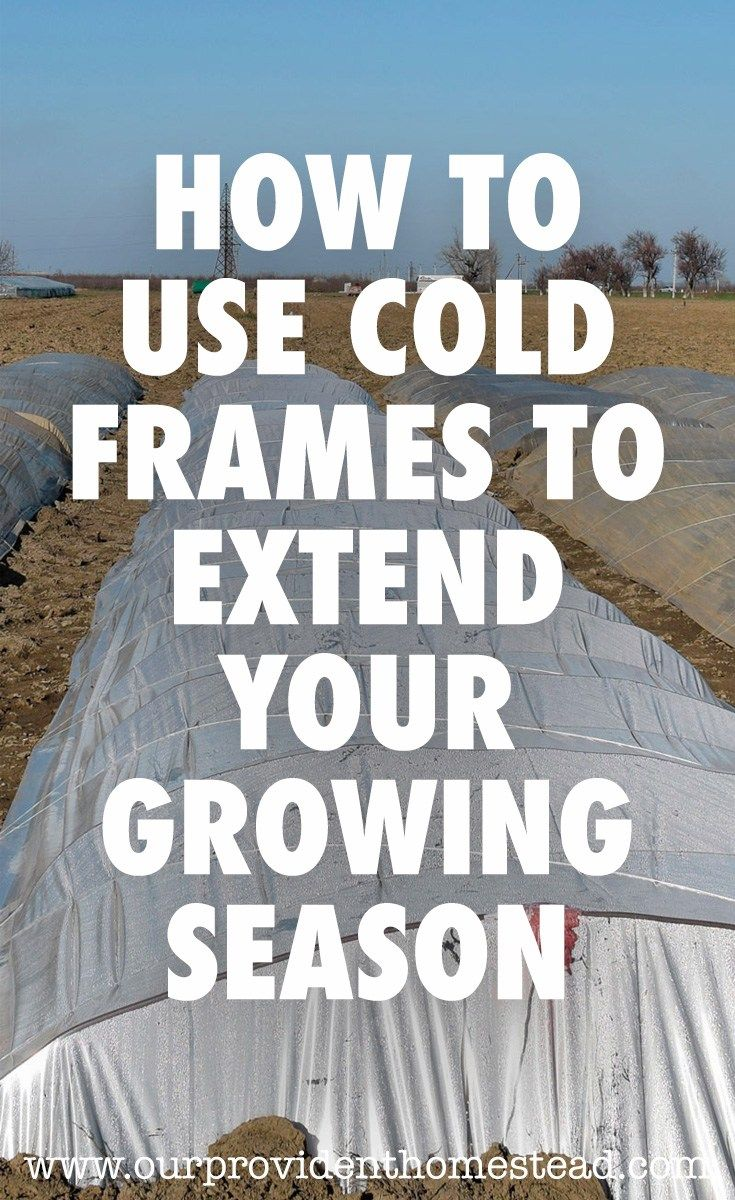 How To Use Cold Frames to Extend Your Growing Season | Gardening ...