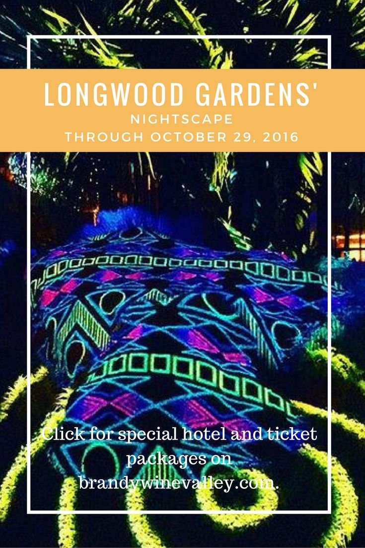 Special hotel and ticket packages to Longwood Gardens Nightscape