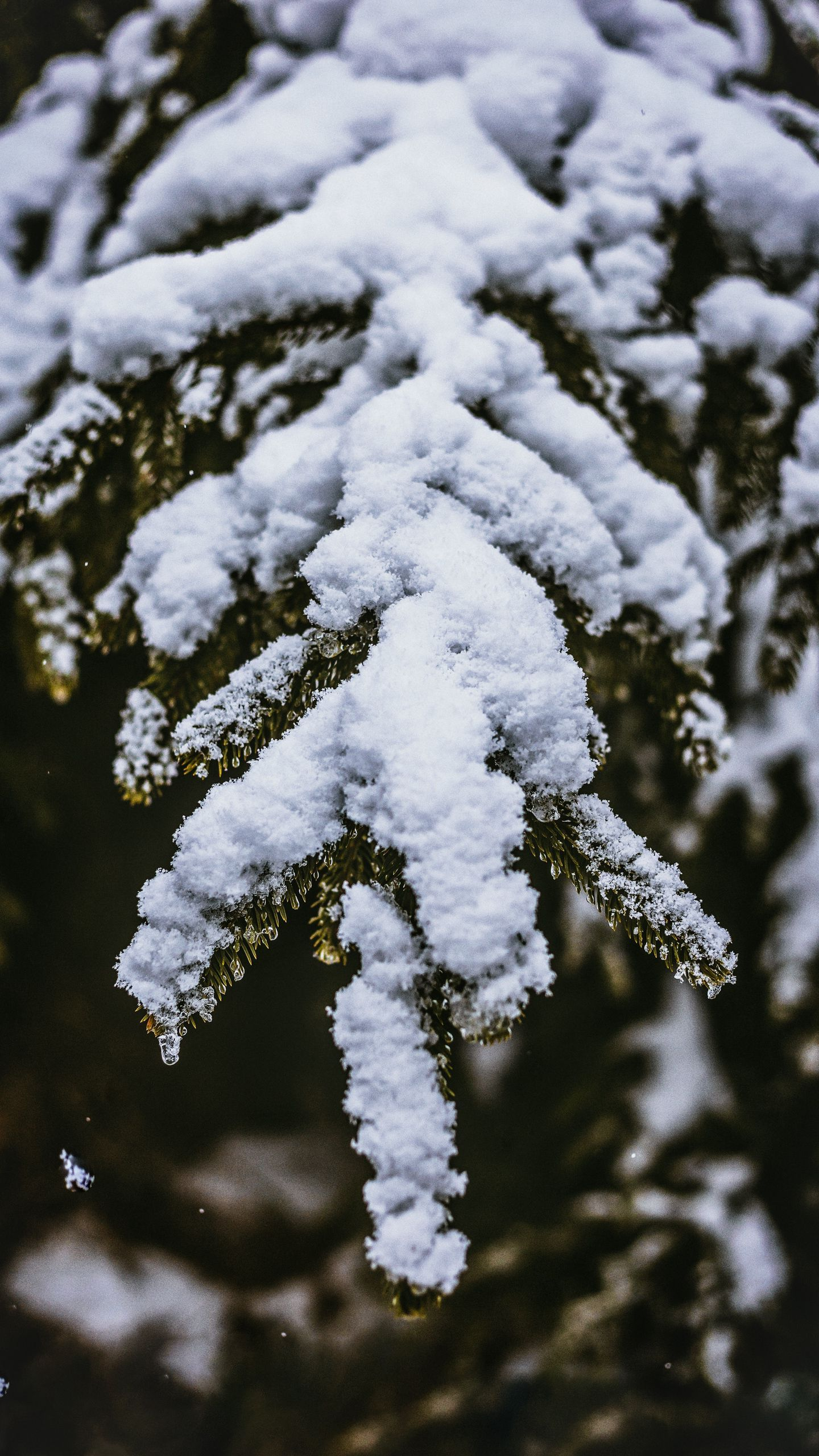 See my collection of cool iPhone and android snow