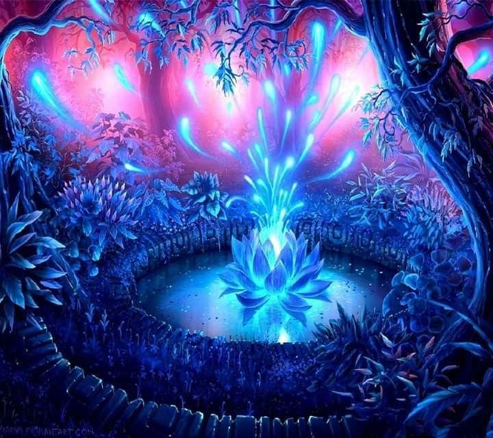 Pin de Sheila Canterberry en looking into the Soul ...