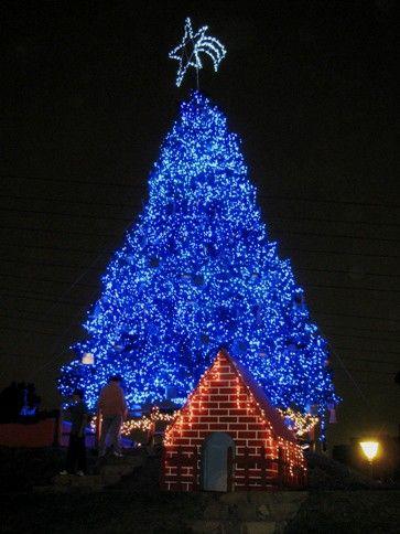Pin by Jen J🍀 on Blue Pinterest Blue christmas, Christmas