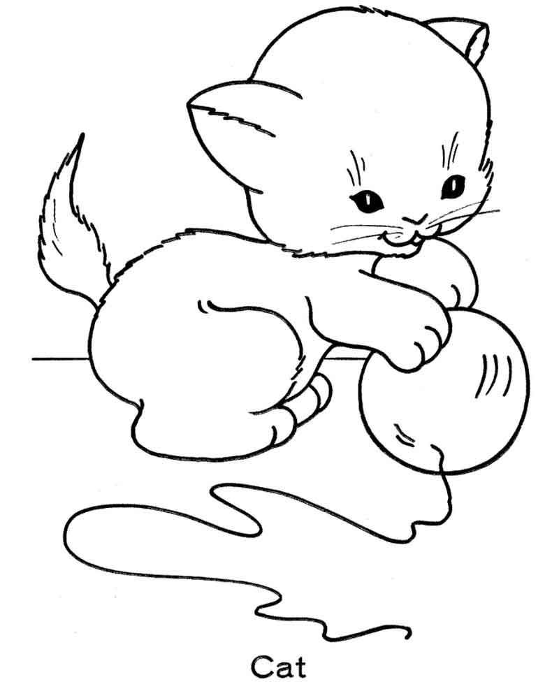 Coloring Page Cat From Animals Coloring Pages Category Find Out