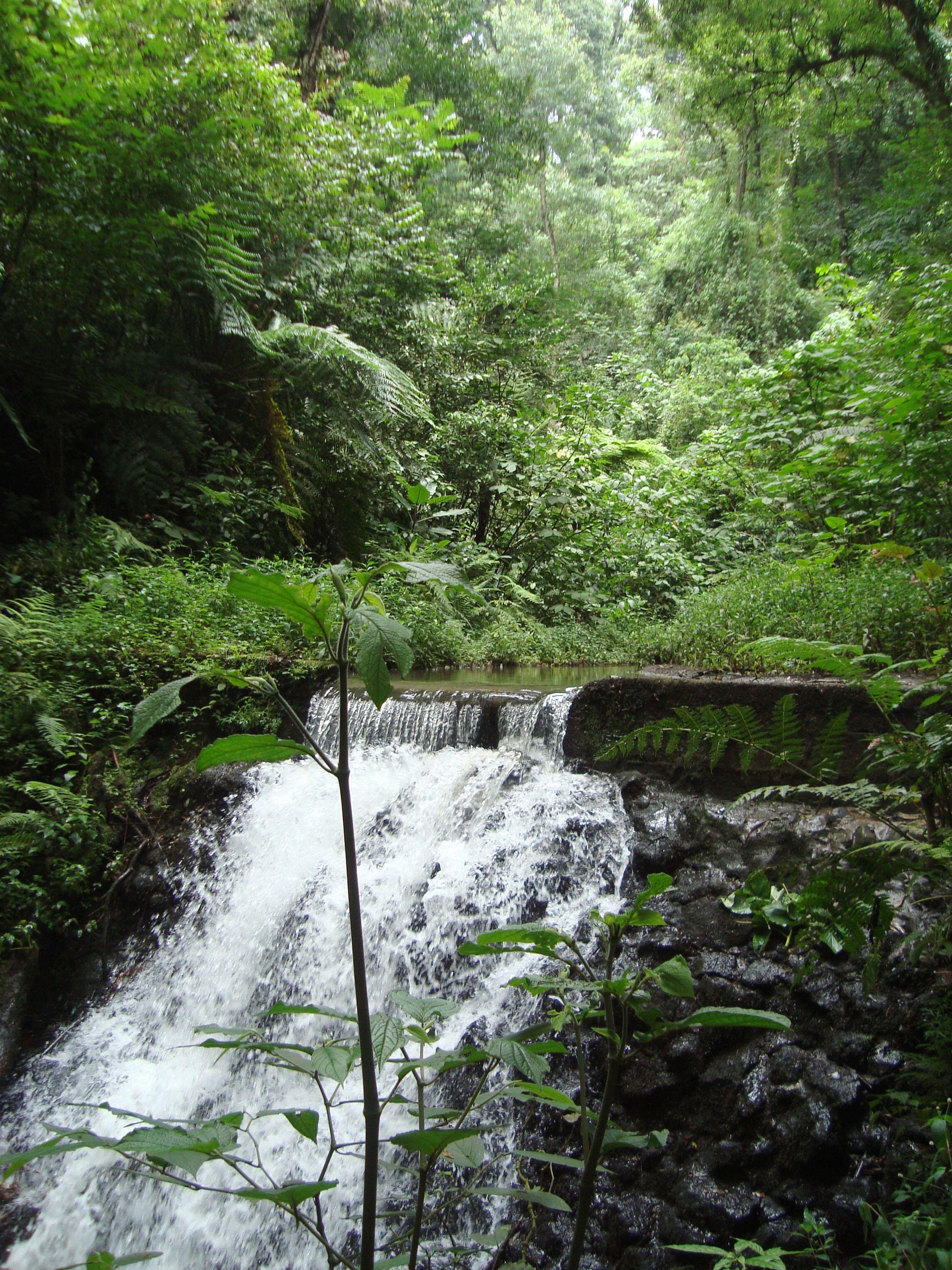 Cascada desde el Corredor Biologico