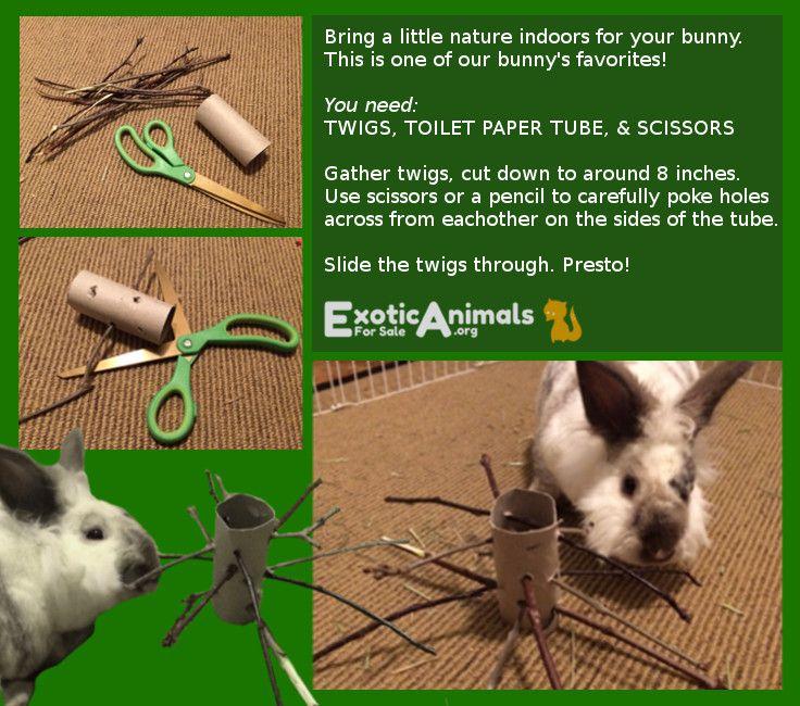 how to make homemade bunny toys
