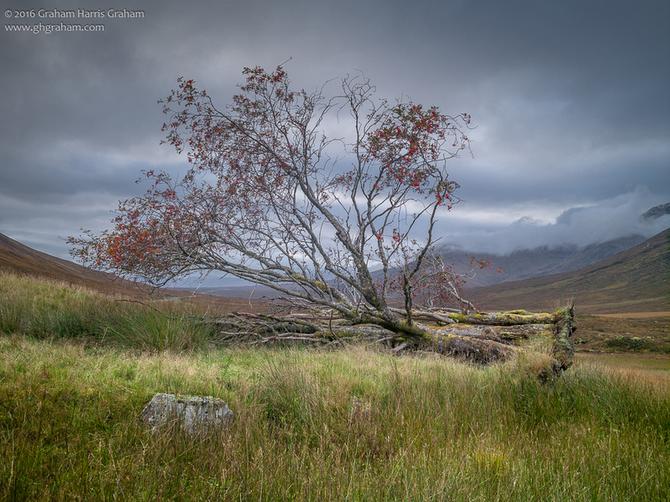 Rannoch Moor, Lochaber, Highland, Scotland. #RannochMoor #Highland #Scotland #visitscotland #ReinoUnido #UK #ScopSpirit