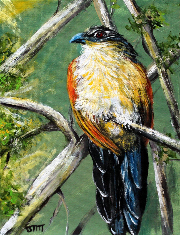 African bird original acrylic painting on 7 x 9 canvas