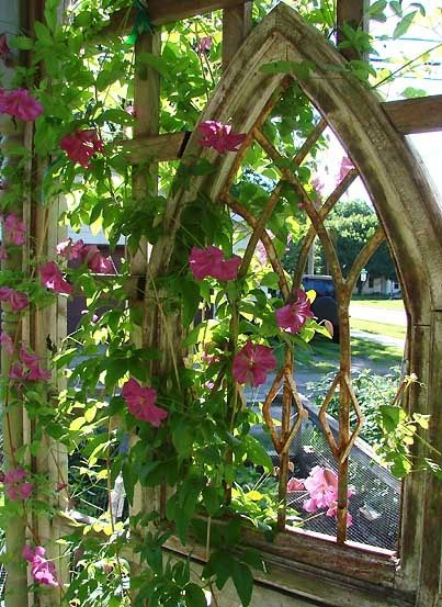 ~Morning Glories~whT a great look for a salvaged victorian home window. Fabulous!