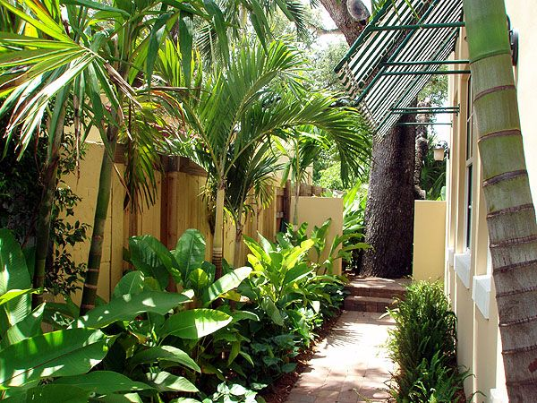 Tropical Landscape Walkway Tropical Landscaping