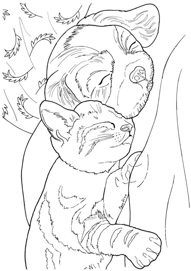 cats and puppies coloring pages - photo#46