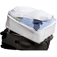 Bedbug-proof your luggage for the paranoid freak in me.