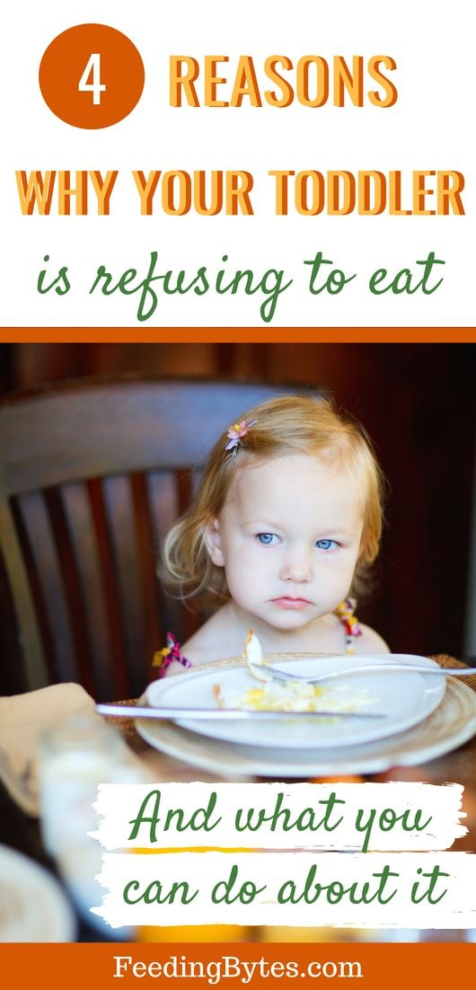 Why is your toddler is refusing to eat  is part of Feeding toddlers - Toddler food refusal is one of the most frustrating things for parents  My advice as a pediatric dietitian  here are the main reasons why your toddler may be refusing food and what you can do about it