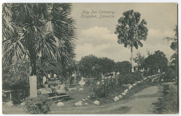 An Old Postcard Of May Pen Cemetery In Downtown Kingston With