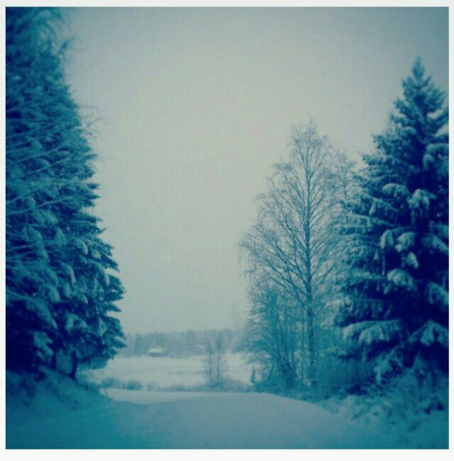 Looks so cold and yet so beautiful