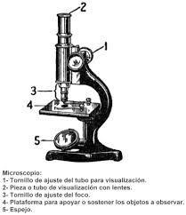microscopio - Buscar con Google