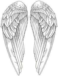 photo regarding Golden Snitch Wings Printable identify Golden snitch wing template k bday Angel wings pics