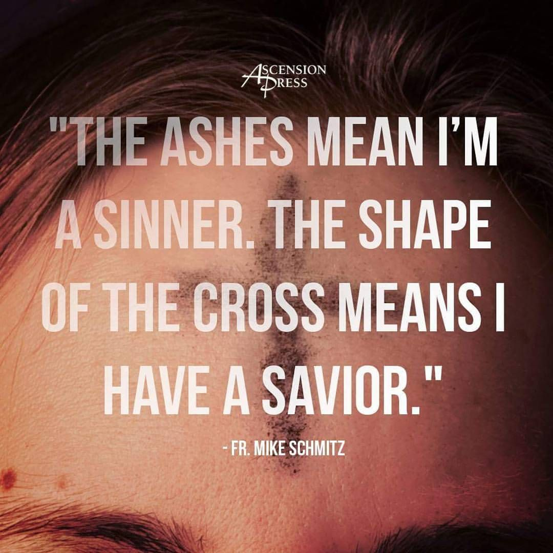 Father Mike Schmitz Quote On The Significance Of Ashes For