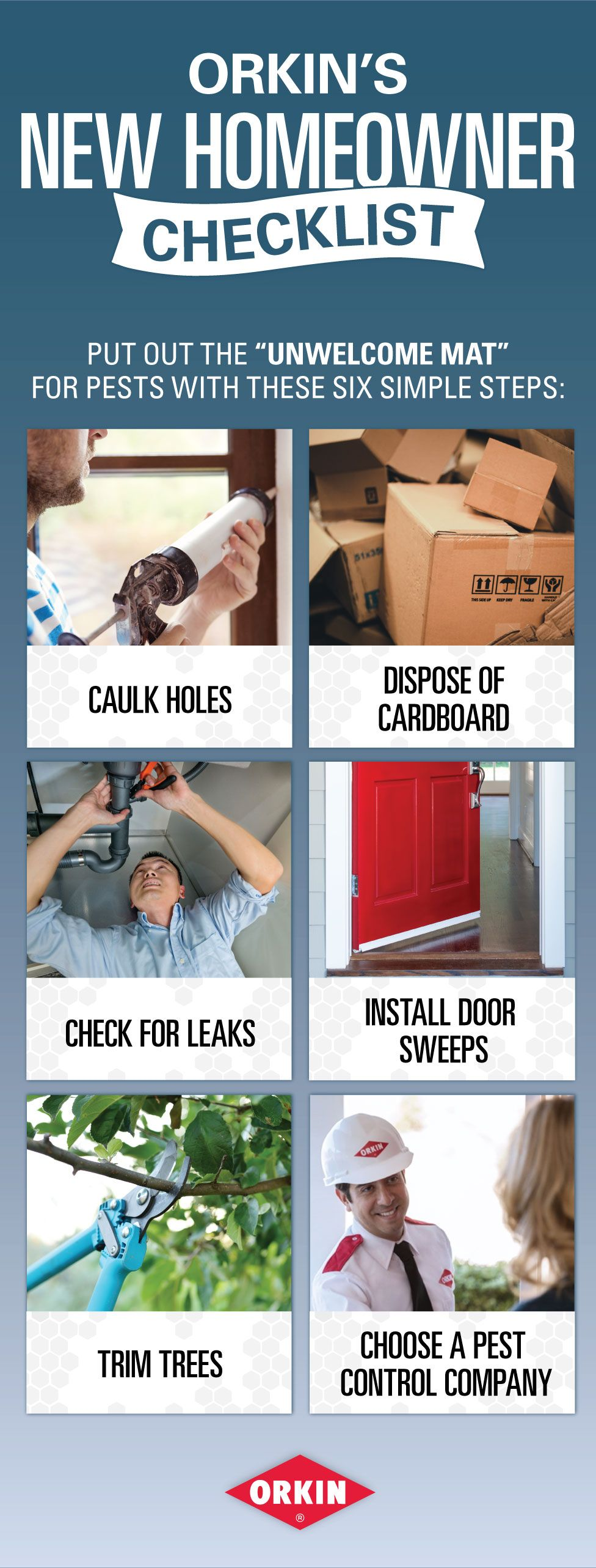Protect Your New Home With These Simple Steps Termite Control Termite Treatment Termites