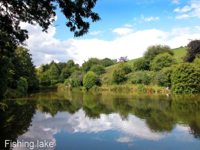 Kingsbridge Lakes Poole A Fantastic 4 Lake Complex In Pleasent Isolated Surroundings Yet Very Close To Main Roads Distanc Kingsbridge Lake Coarse Fishing