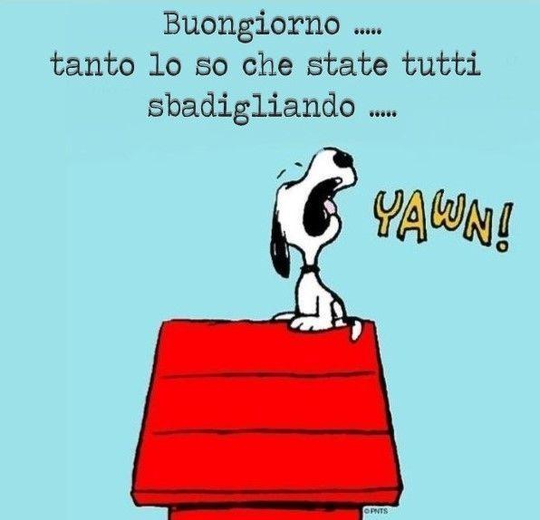 Snoopy buongiorno buongiorno t snoopy for Immagini snoopy gratis