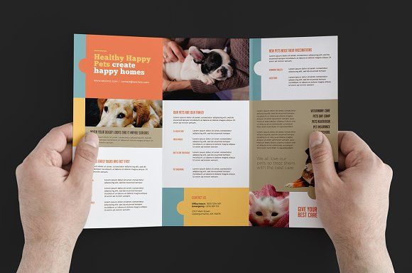 Vet Clinic Trifold Brochure Template Trifold Brochure Template Trifold Brochure Brochure