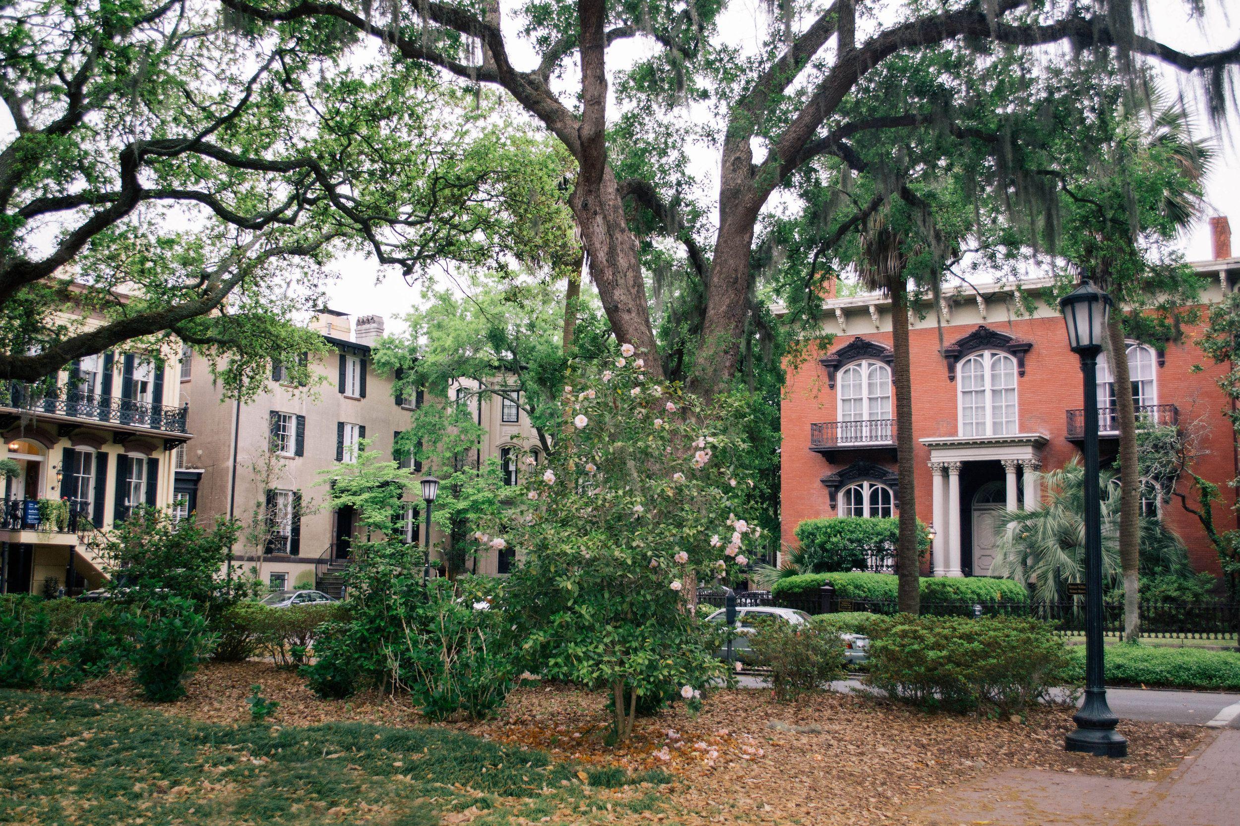 The Mercer House Savannah Georgia Savannah Savannah Chat