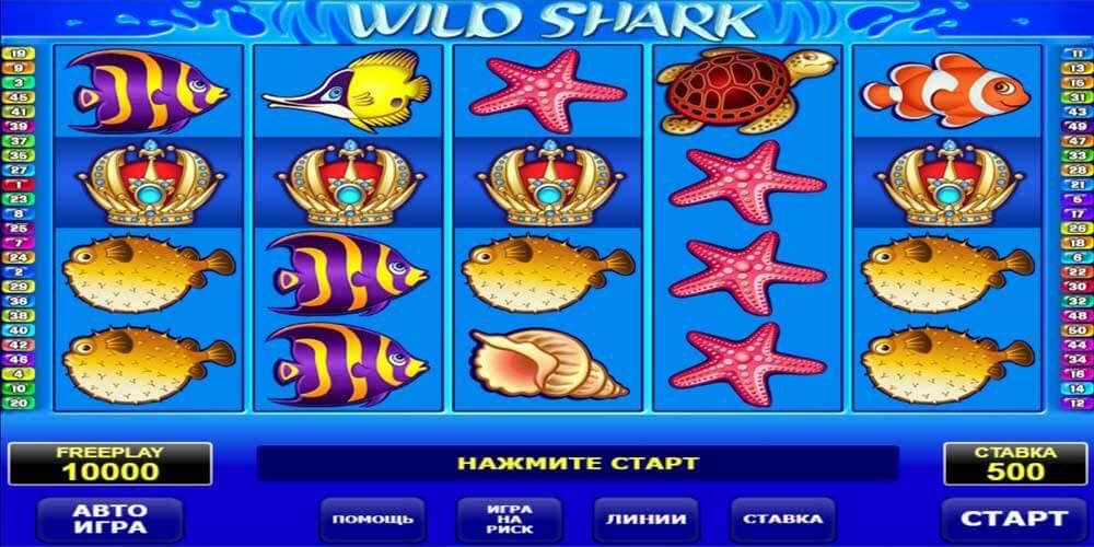 Игровые автоматы акулы играть игровые автоматы без регистрации мельницы