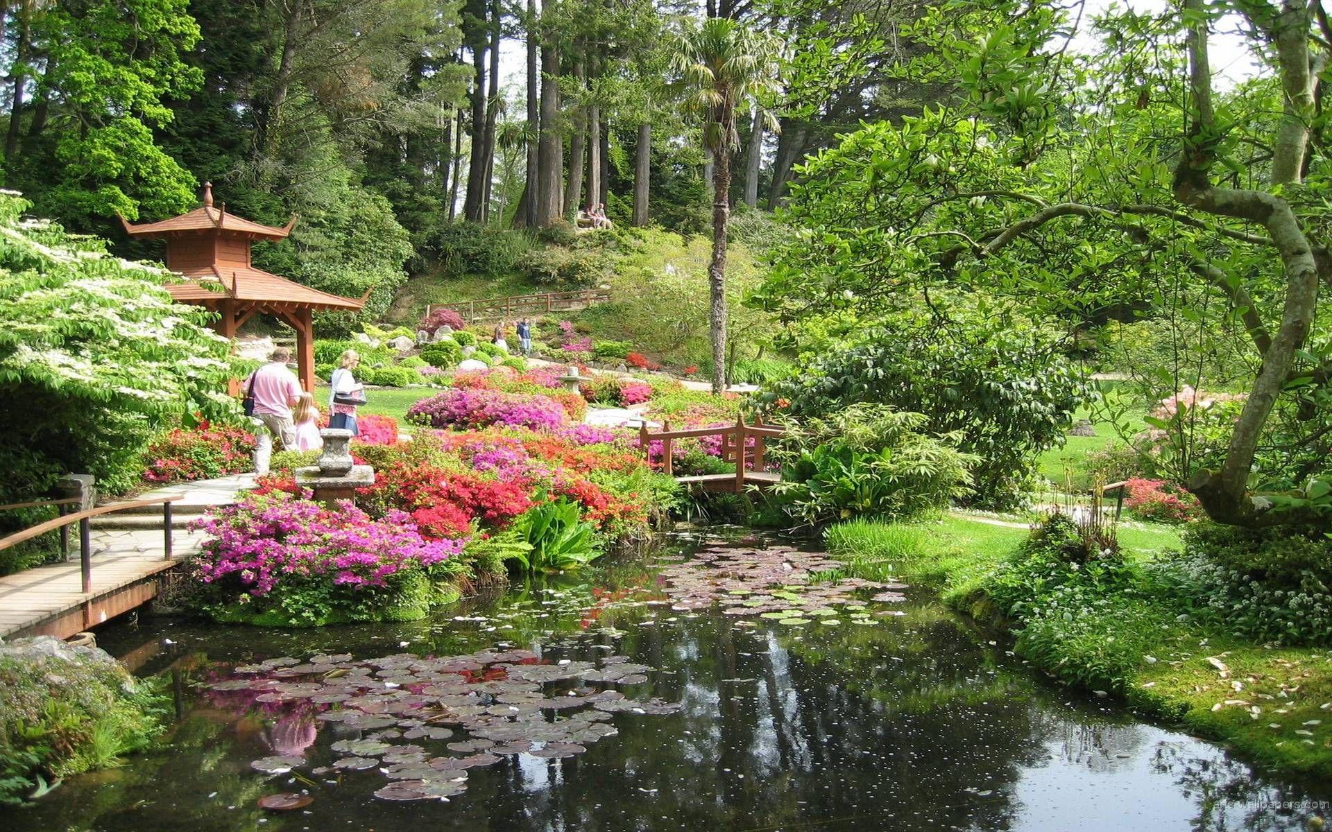 Japanese Flower Garden Wallpaper Awesome 716789