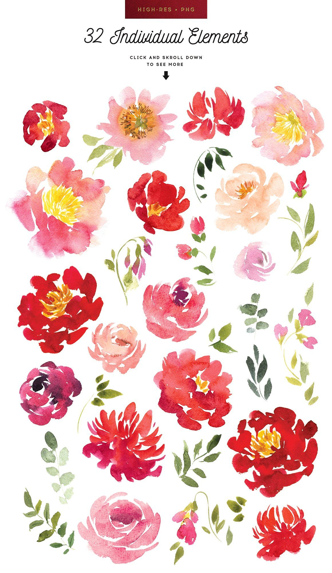 ad: Hand painted watercolor flowers set - Amelia. Perfect for cards ...