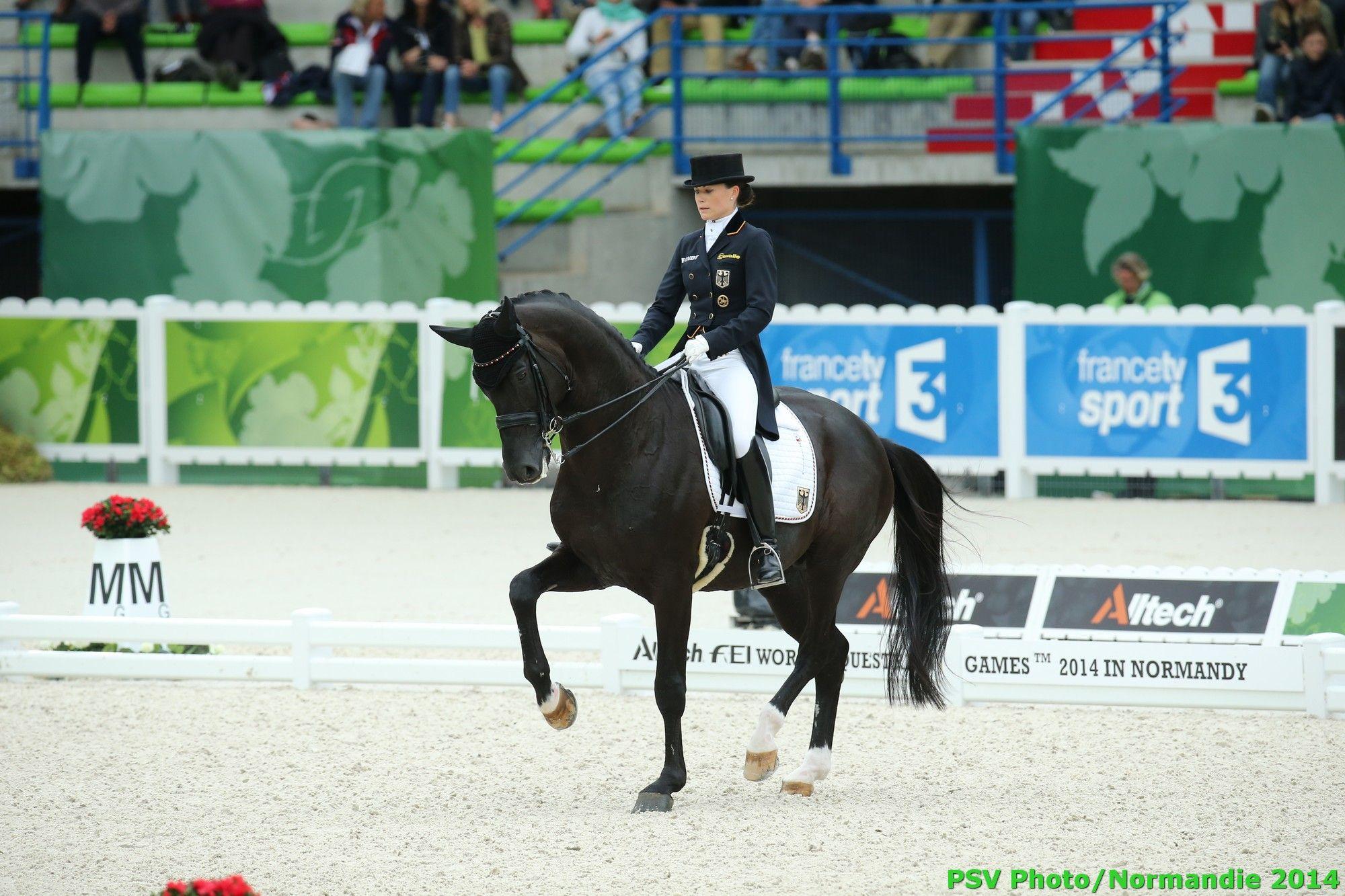 Dressage Kristina Sprehe Desperados Frh Ger August 27th Copyright Psv Photo Dressage Horses Horses Dressage