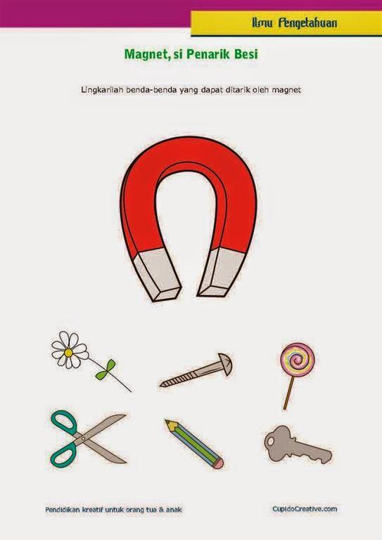 Benda Yang Dapat Ditarik Oleh Magnet : benda, dapat, ditarik, magnet, Belajar, Mengenai, Fisika, Dasar,, Benda, Tertarik, Magnet, Elementary, Schools,, Elementry, School,